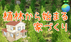 植林から始まる家づくり